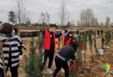 北京社区青年汇开展植树环保系列活动